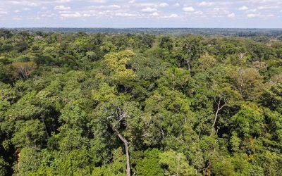 A importância da participação do governo do Acre na COP-23