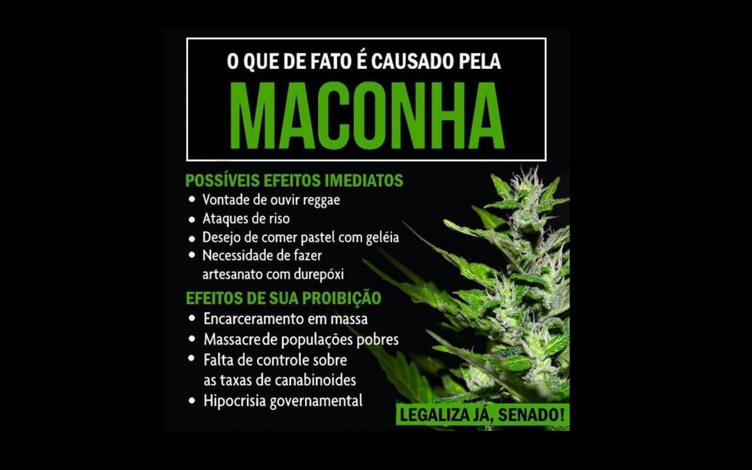 Em meio à Semana Nacional de Política sobre Drogas, Senado e PF mostraram que não entenderam droga nenhuma