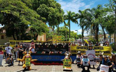 Ativistas por Direitos dos Animais protestam em São Sebastião