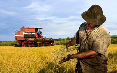 O agronegócio e a agricultura familiar