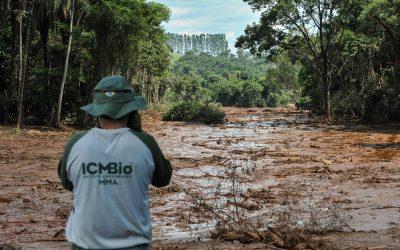 Cientistas lançam carta com críticas a proposta de Lei Geral de Licenciamento Ambiental