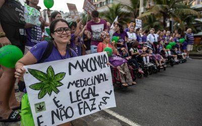 Mercado da maconha medicinal