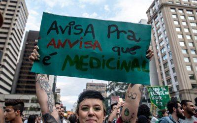 Brasil deu primeiro passo para regulamentar maconha medicinal; e agora?