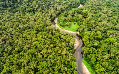 Ministro do Meio Ambiente e embaixadores admitem hipótese de fim do Fundo Amazônia
