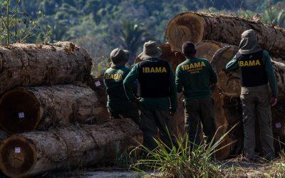 Acompanhada da PF e da Força Nacional, equipe do Ibama é alvo de tiros no Pará