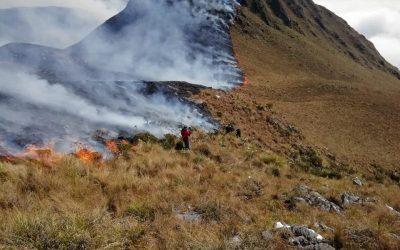 Incêndios na Amazônia destruíram 950 mil hectares na Bolívia