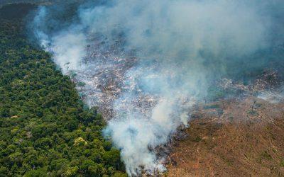 Agenda de atos em defesa da Amazônia pelo Brasil e pelo mundo