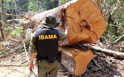 Servidores ambientais denunciam discursos difamatórios de Ricardo Salles contra ICMBio