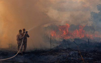 Comitê de Juízas e Juízes pelos Direitos Sociais aciona Brasil por incêndios na Amazônia