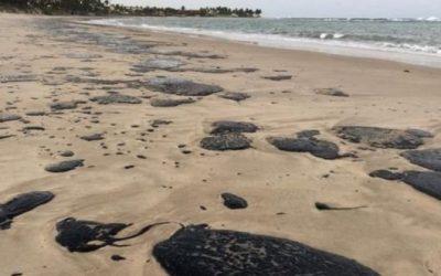 Maureen Santos comenta ao vivo crime ambiental nas praias do nordeste no programa EcoInspiração