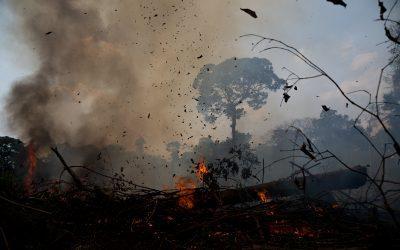 Imagens impactantes do fogo na Reserva Extrativista Chico Mendes