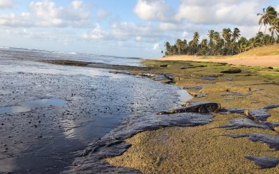 O que se sabe até agora sobre as manchas de óleo no litoral nordestino?