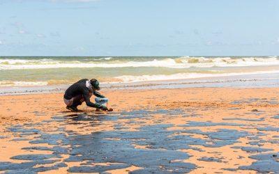 Grupo de voluntários se mobiliza para limpar praias na Bahia. Confira as fotos