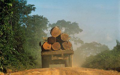 Dados do aumento do desmatamento no Brasil divulgados pelo INPE são alarmantes