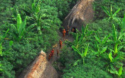 Em nota, Unijava denuncia ataques e falta de proteção da Terra Indígena no Vale do Javari