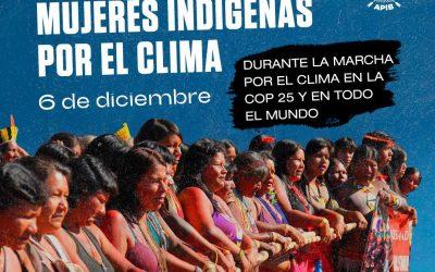 Mujeres indígenas convocan a la Acción Global de lo Clima