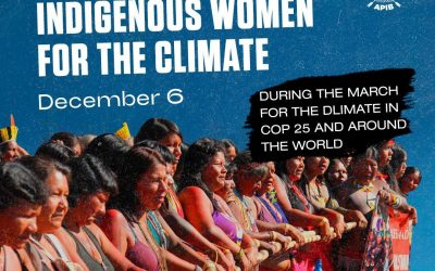 Indigenous Women Call for Global Climate Action