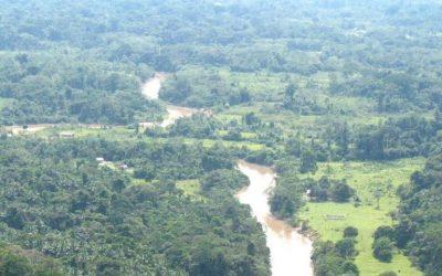 Dois absurdos ambientais em um único projeto de lei