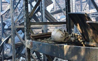 Incêndio no Museu da UFMG compromete cultura e história