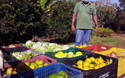 Movimentos pressionam pela execução do Programa de Aquisição de Alimentos (PAA)