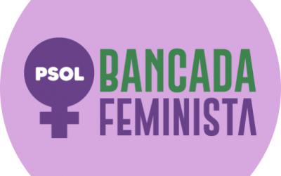 Por que a renda emergencial é tarefa do feminismo popular?