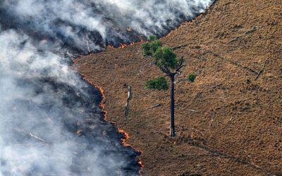 Acordo UE-Mercosul tem revés histórico devido à política ambiental brasileira