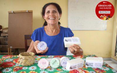 A importância da Lei dos Babaçus Livres para as quebradeiras de coco