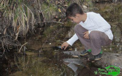 Reconhecimento de territórios tradicionais em Sobrado (MG)