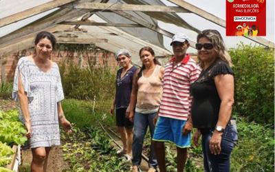 Polos agroflorestais em assentamentos de reforma agrária dão exemplo de sustentabilidade no Acre