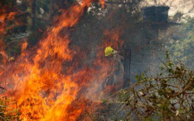 Amazônia tem pior período de queimadas dos últimos 10 anos e Pantanal tem pior mês da história