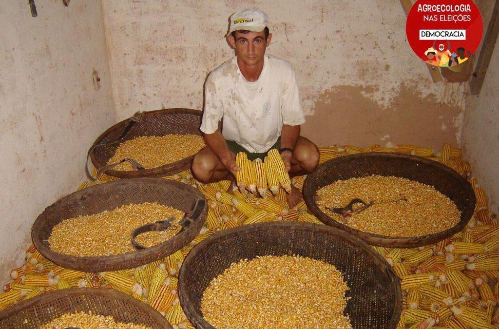 Sementes crioulas no Espírito Santo: agricultoras/es cobram a retomada de políticas públicas