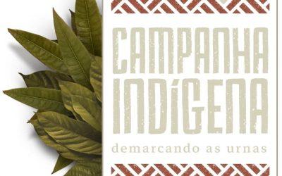 Vote parente, vote! A participação indígena no sistema eleitoral brasileiro