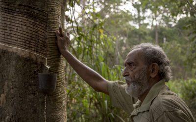 As Reservas Extrativistas não são Parques